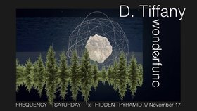 Frequency Saturday : Hidden Pyramid IV  w/: D. Tiffany, Wonderfunc @ Copper Owl Nov 17 2018 - Mar 20th @ Copper Owl