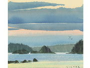 Warm Skies at Dusk, Salt Spring Island by  Victor J. Crapnell