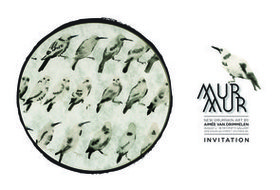 MURMUR by Aimee Van Drimmelen - Sep 25th @ the fifty fifty arts collective
