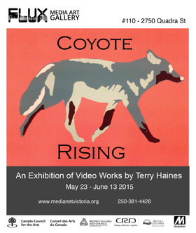 Exhibition of work by video artist Terry Haines: Terry Haines, Aaron Rice @ FLUX MEDIA GALLERY May 23 2015 - Sep 21st @ FLUX MEDIA GALLERY
