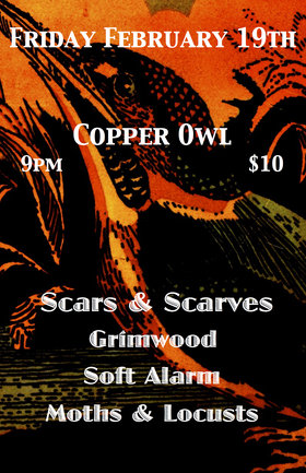 Cosmic Leap Year Get Down w/: Scars and Scarves, Grimwood, Soft Alarm, Moths and Locusts @ Copper Owl Feb 19 2016 - Apr 7th @ Copper Owl