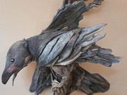 Sea Bird by  Amanda Stacey