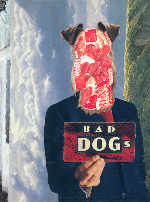 Bad Dogs by  Cameron Kidd