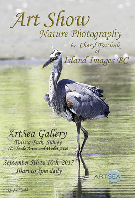 Nature Photography and Art: Cheryl Taschuk  @ ArtSea Gallery Sep 5 2017 - Apr 8th @ ArtSea Gallery