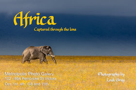Africa Captured Through the Lens @ Metropolis Photo Gallery Oct 1 2017 - Feb 19th @ Metropolis Photo Gallery