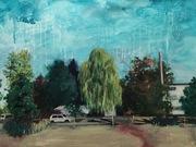 McRae Park by  Trish Shwart