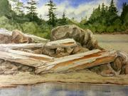 MacKenzie Beach Driftwood by  Catherine Taron