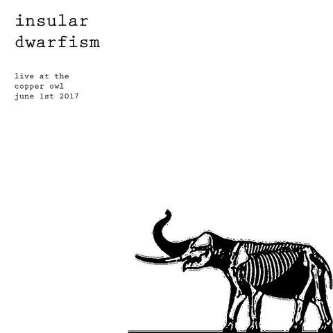 Insular Dwarfism