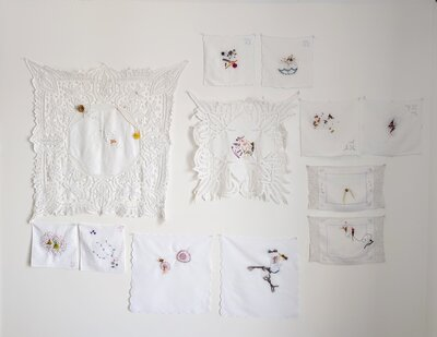 Making Known (installation) by  Oona McClure