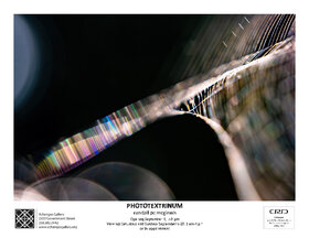 Phototextrinum:Weaving Light, Coaxing Death: Randall McGinnis  @ Xchanges Gallery Sep 12 2020 - Sep 26th @ Xchanges Gallery