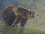 Mountain Man (Grizzly) by  Patricia Mansell