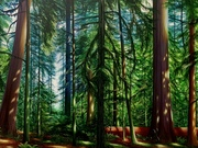 Cathedral Grove by  Logan Ford