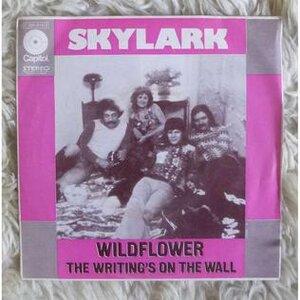 Photo- Skylark 45 rpm credit Wikipedia  -   Skylark