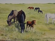 Mares and Colts by  Laurel Rossnagel