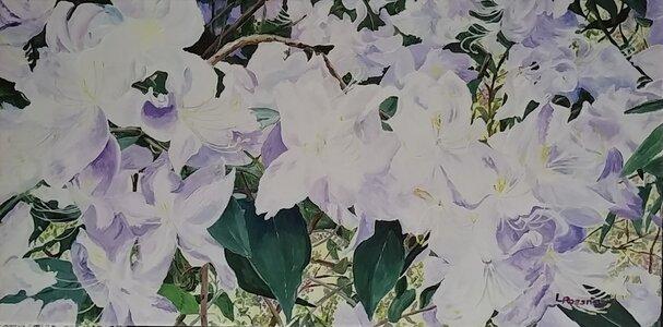 Purple Hues by  Laurel Rossnagel