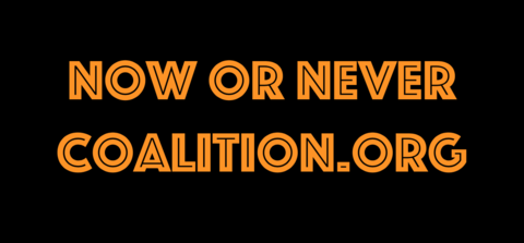 Now Or Never Coalition