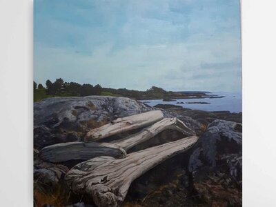 An Inviting Driftwood Bench in Victoria, BC by  Donna Rose Law