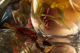 Looking Glass: Lyssa Pearson @ Xchanges Gallery May 9 2021 - Oct 25th @ Xchanges Gallery