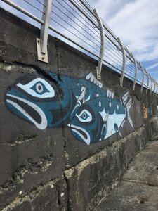 Herring Welcome by  Jesse Campbell