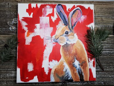 Bunny by  Katelynne Newman