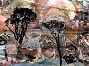 Trees Remembered 4 by  Arlene Nesbitt