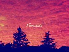 Profile Image: Forcast
