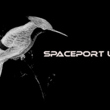 Profile Image: Spaceport Union