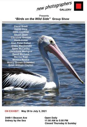 Birds on the Wild Side @ new photographers GALLERY Jun 4 2021 - Oct 17th @ new photographers GALLERY