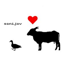 Profile Image: Sanijav