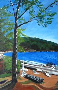 Sunshine Coast by  LINDA URBINSKY