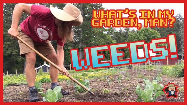 What\'s In My Garden, Man?