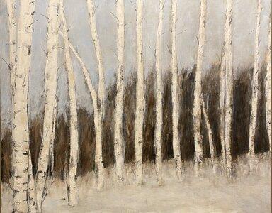 Winter Forest by  Katharine Geddes