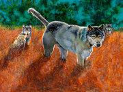 WolfInSunset by  Carole Finn (OSA SFCA)