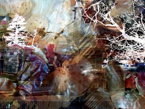 Trees Remembered 3 by  Arlene Nesbitt