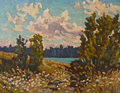 Evening Clouds & Queen Anne's Lace by  Jeffrey J Boron