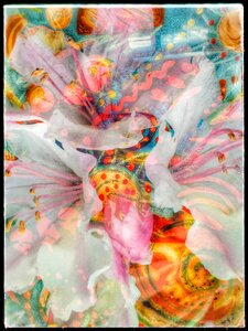 Ecstasy in Real Time by  Carol Auld