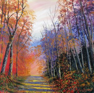 Forest Road by  Judith Saunders