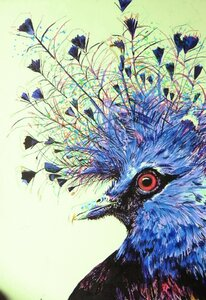 Victorian Pigeon by  Kelly-Dawn Dabous
