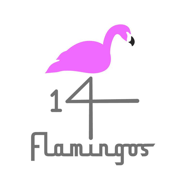Profile Image: 14 Flamingos