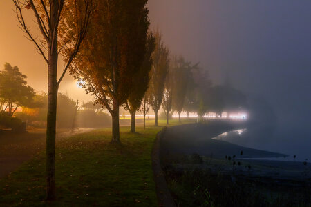 Foggy Evening by  Emily Norton