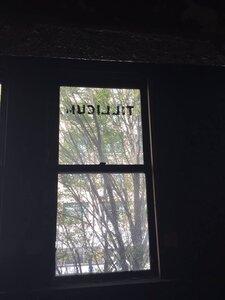 Photo- Tillicum Club Window 2015 Credit Kalie Jansen  -   Tillicum Club