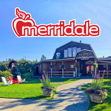 Profile Image: Merridale Cidery & Distillery