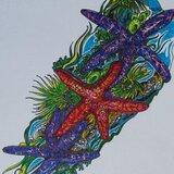 "Profile Image: Debra Thomlinson  ""Waterline Art Studio"""