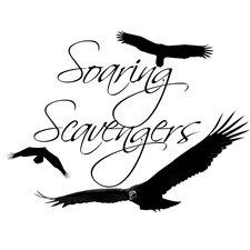 Profile Image: Soaring Scavengers Photography