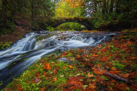 Autumn Colors by  Emily Norton