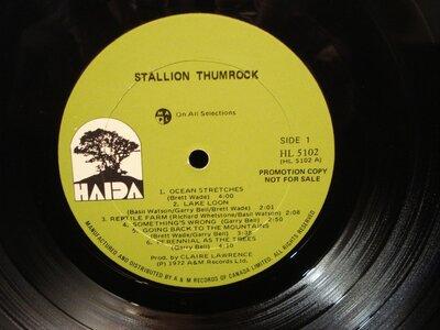 Photo -   Stallion Thumrock  - Photo Credit:  Haida Records
